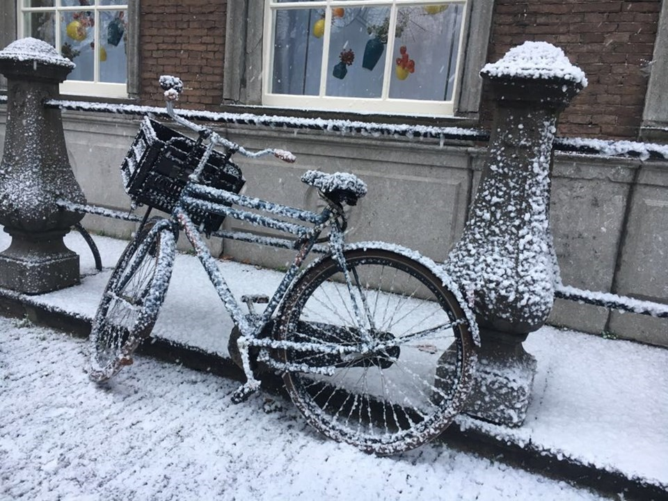 Snoweffects.nl, let it snow | Rotterdam